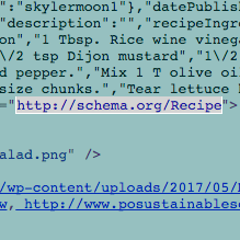 Using the recipe schema